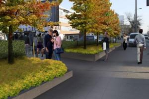 Poznań stawia na zieleń w mieście