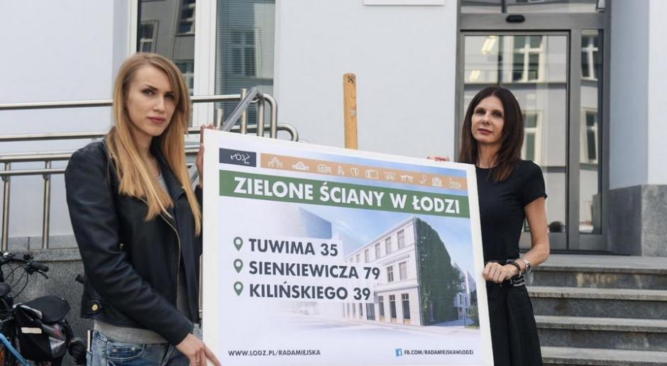 Ściany mchu antysmogowego w Łodzi