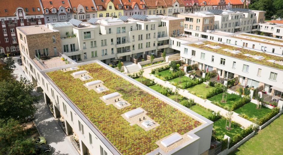 Zielony dach, czyli ogród na wysokościach