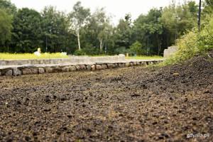 Rośnie scena i park na Kamiennej Górze w Gdyni