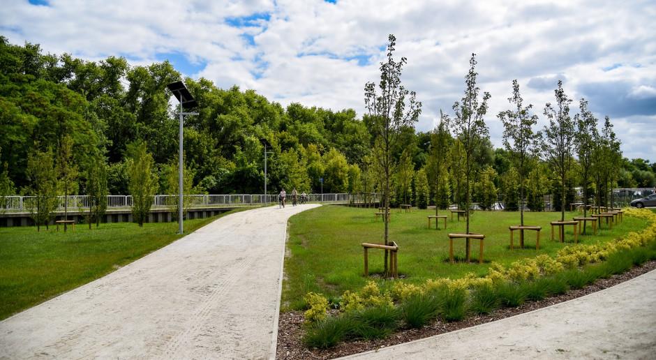 Nowy park w Poznaniu. Oprócz zieleni i alejek spacerowych jest plac zabaw i tor agility