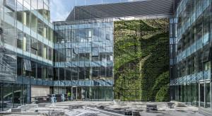 Największa zielona ściana w Polsce