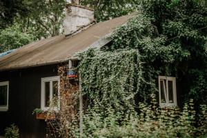 Wielkimi krokami zbliża się rewitalizacja osiedla Jazdów. To unikatowe miejsce w Warszawie