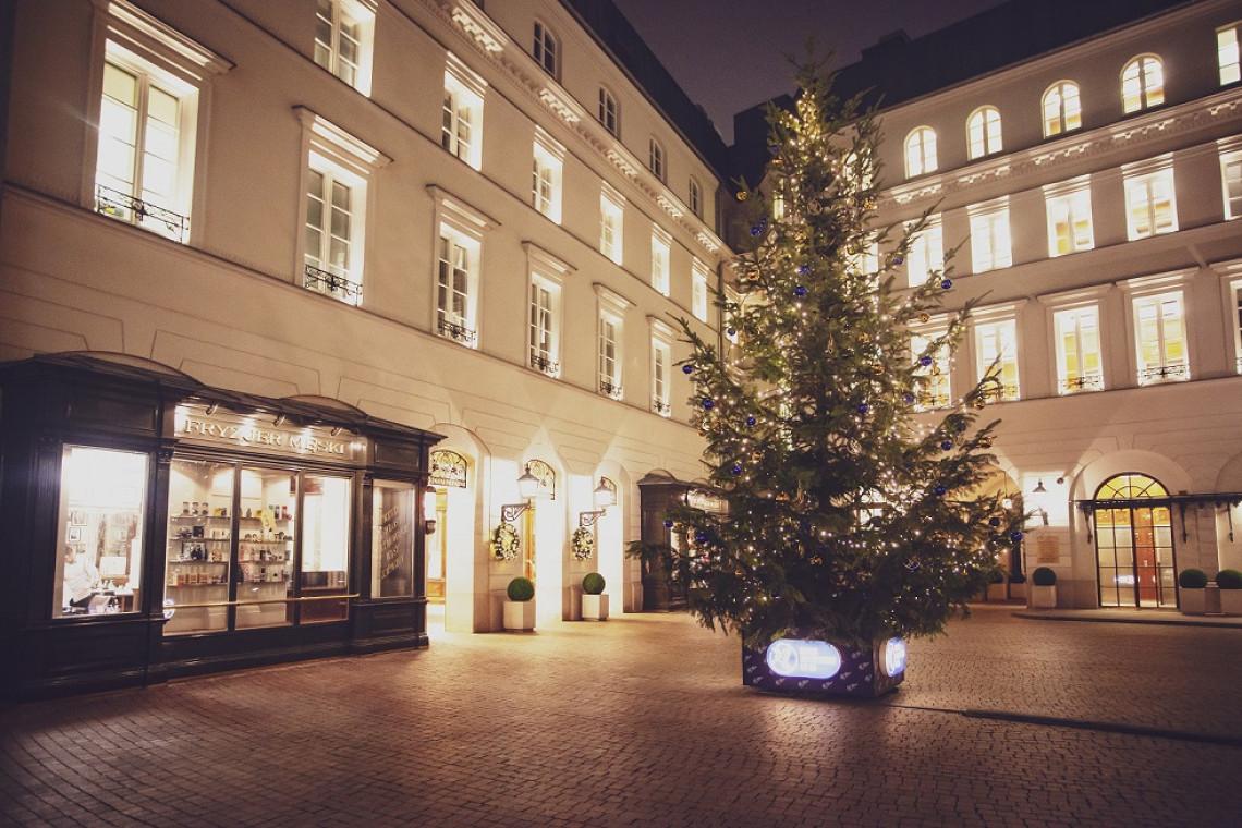 Najwyższa żywa choinka w Warszawie stanęła na Placu Bankowym 1