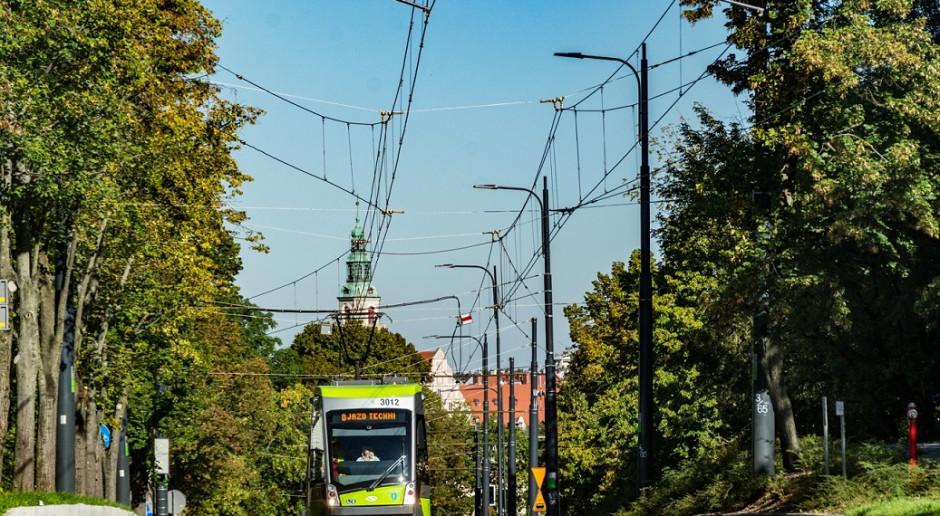 Które miasta zostaną docenione za ekologiczne rozwiązania? Ruszył konkurs dla gmin
