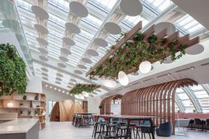 Cisza w biurze: ekologiczne i efektowne panele akustyczne