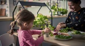 IKEA: Do 2030 r. będziemy biznesem w pełni zrównoważonym