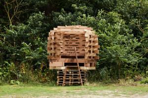 Piękno zaklęte w drewnie. Niezwykła kolekcja designerskich przedmiotów