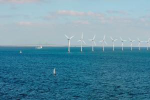 Zielona energia w Polsce - jakie perspektywy?