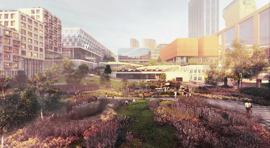 Towarowa 22 będzie miejską wyspą zieleni - zapowiadają architekci z Bjarke Ingels Group