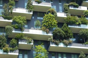 Dotacje z unijnego programu LIFE i NFOŚiGW na projekty dot. środowiska i klimatu