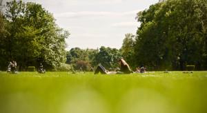 W Katowicach powstało kolejne zielone miejsce spotkań