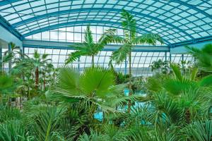Wakacje pod palmami. Otwarcie Suntago Village w największym parku wodnym Europy