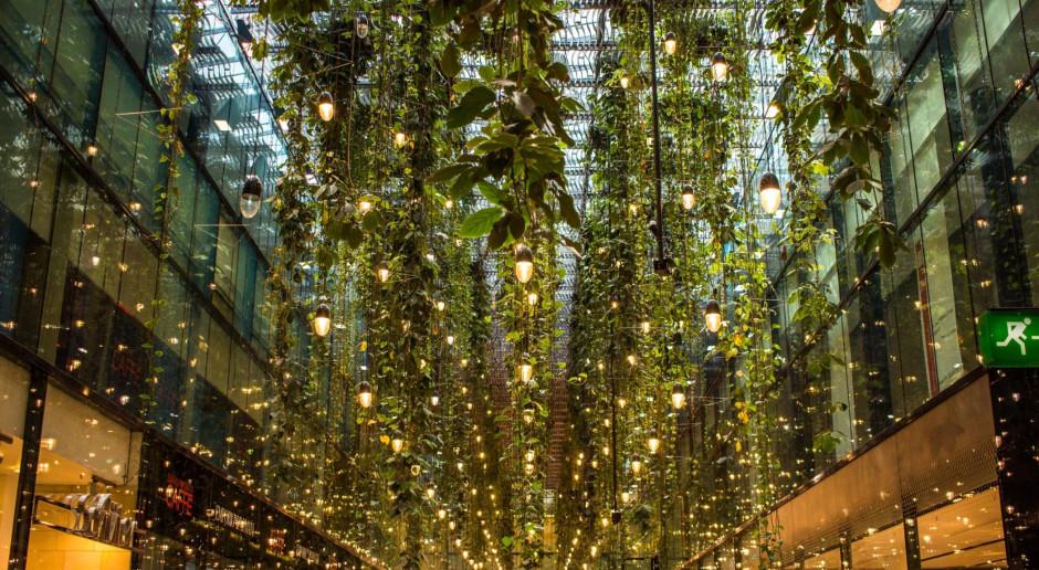 Czy trójmiejskie galerie handlowe są eko?