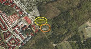 Gdynia szuka projektanta II etapu parku rodzinnego na Małym Kacyku