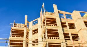 Sposób na neutralność energetyczną: rola budownictwa drewnianego