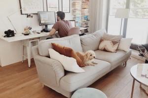 Architekci zostają w domach. Zaglądamy do ich home office
