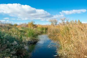 Do 30 listopada można zgłaszać projekty do Polskiej Nagrody Krajobrazowej