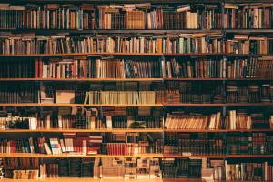 Łódzka biblioteka uruchamia... rowerową filię