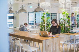 Elastyczne miejsca pracy w erze post-covid według Skanska i Business Link