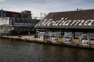 Restauracje w dobie koronawirusa. Ten lokal w Amsterdamie proponuje klientom posiłek w dwuosobowych szklarniach