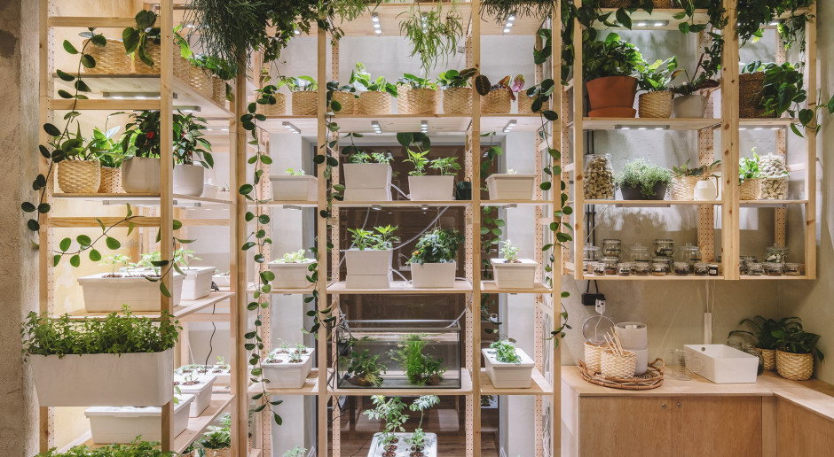 IKEA otworzyła zieloną przestrzeń w sercu Szczecinia