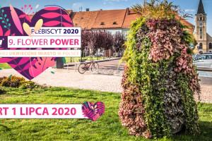 Internauci wybiorą najpiękniej ukwiecone miasto w Polsce