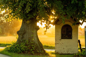 Małopolska odnawia zabytkowe kapliczki