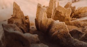 Archeolodzy odkryli osadę sprzed ponad 7 tys. lat na Pomorzu Zachodnim