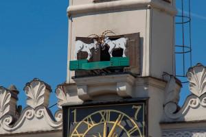 Poznańskie koziołki przypominają o zasadach bezpieczeństwa sanitarnego