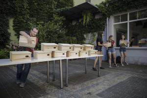 Na balkonach wrocławskich bloków pojawią się domki dla jerzyków