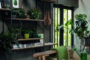 Biophilic design - tęsknota za naturą we wnętrzach