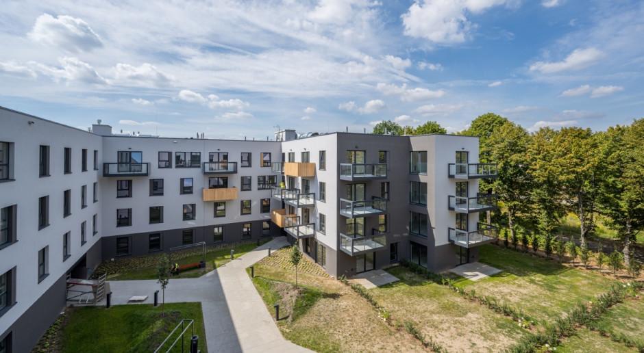 Ponad 100 nowych drzew w ramach inwestycji w Poznaniu