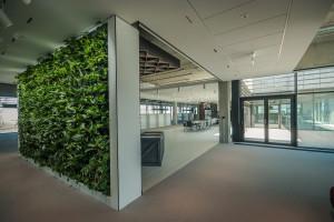 Te biura stawiają na zieleń. Top 10 realizacji ostatnich miesięcy
