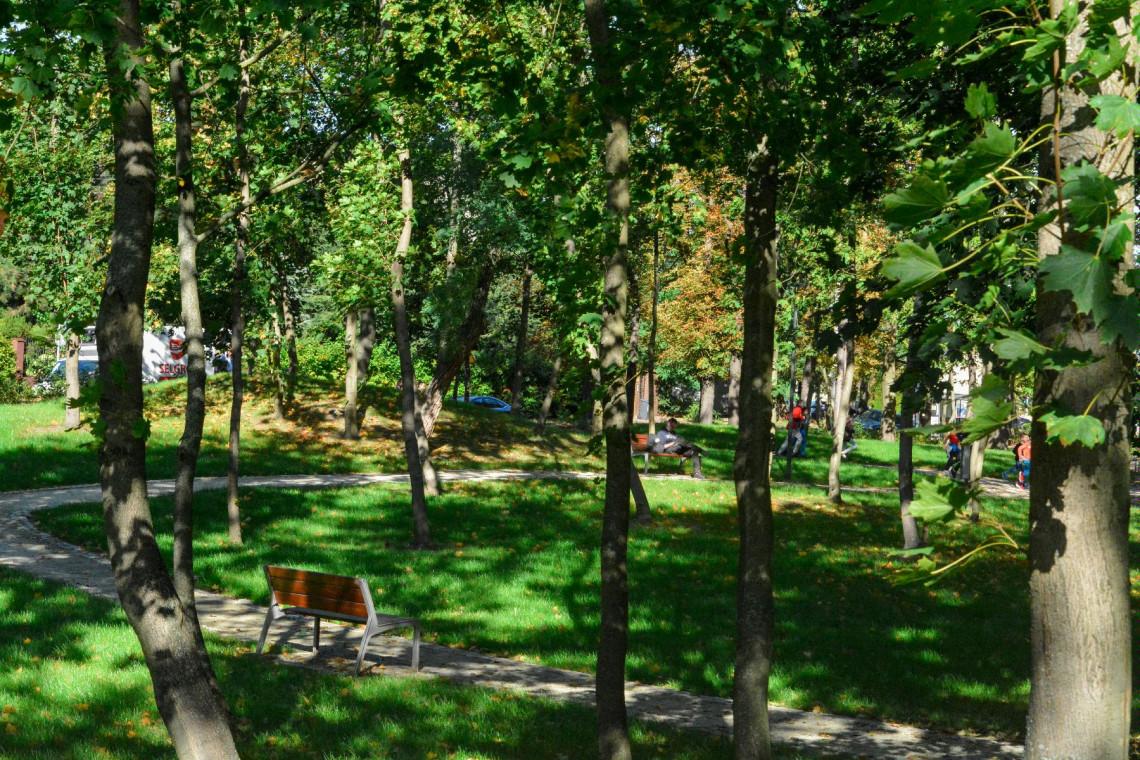 Poznań zmienił zaniedbany teren w piękny park