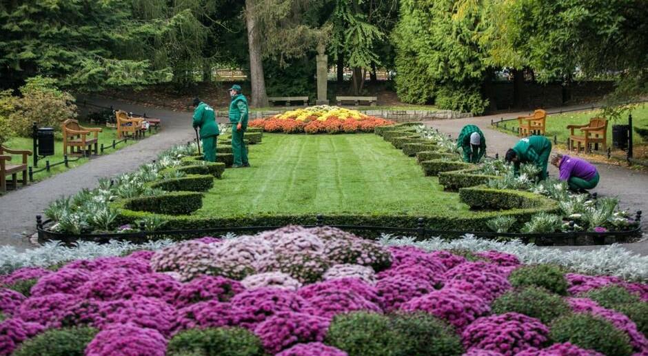 Jesienne sadzenie roślin w Gdańsku