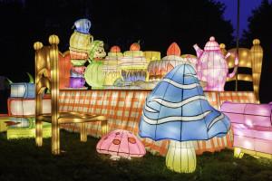 Kraina czarów w Krakowie: niezwykła wystawa świetlna w Ogrodzie Doświadczeń