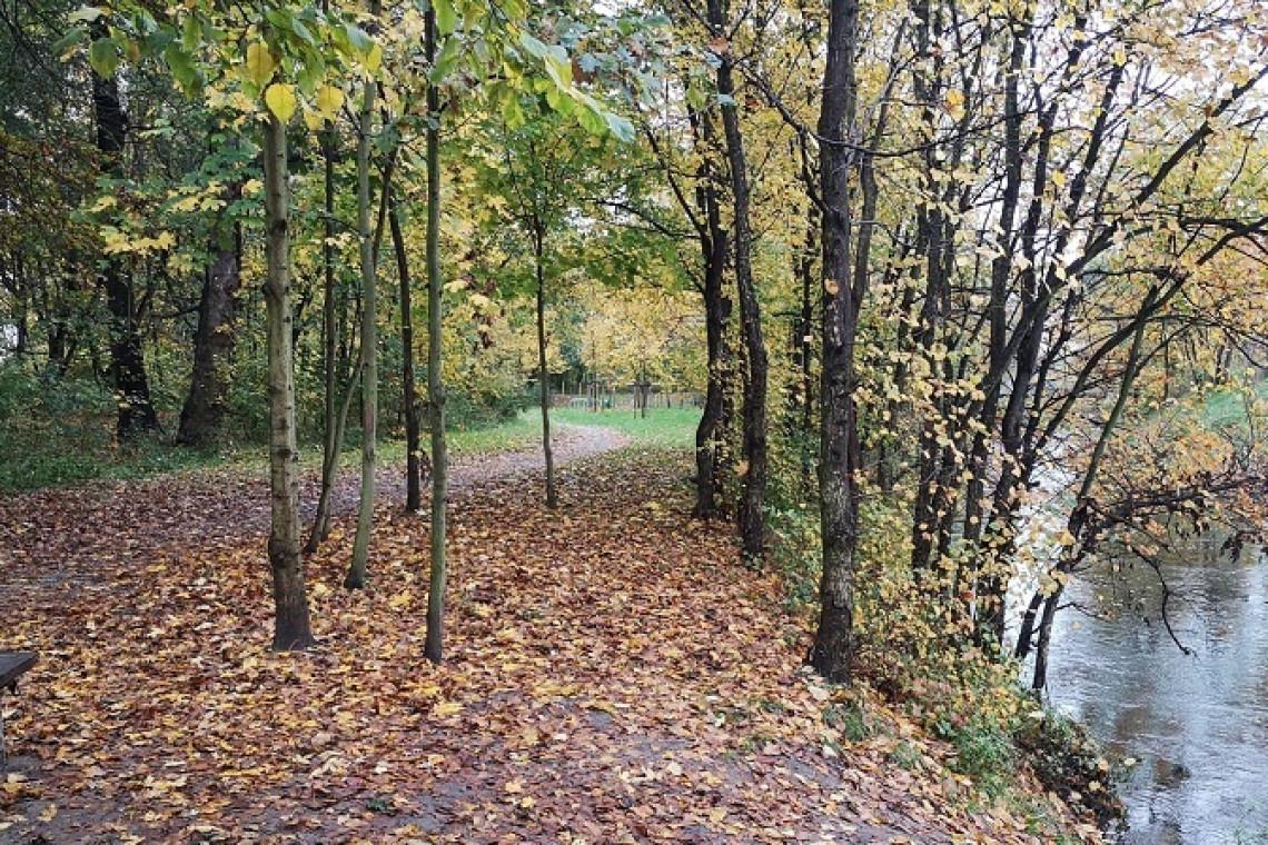 Kolejna rewitalizacja we wrocławskim Parku Widawskim