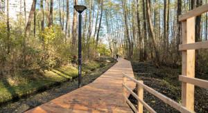 Ekologiczna drewniana ścieżka zastąpiła asfalt w warszawskim parku Olszyna