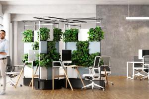 Biuro bliżej natury
