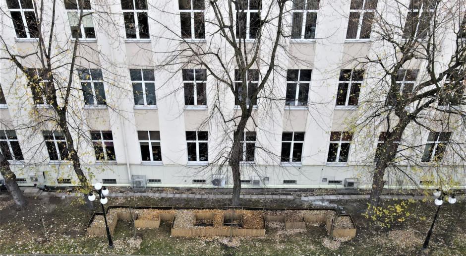 W Krakowie powstało osiedle domków dla jeży. To inicjatywa AGH