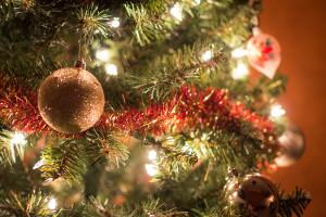Gdański pomysł na świąteczne iluminacje: choinki dzielnicowe