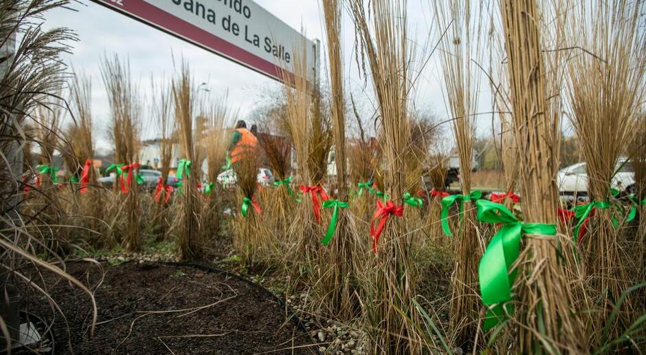 Rabaty w Gdańsku ozdobiły czerwone i zielone wstążki