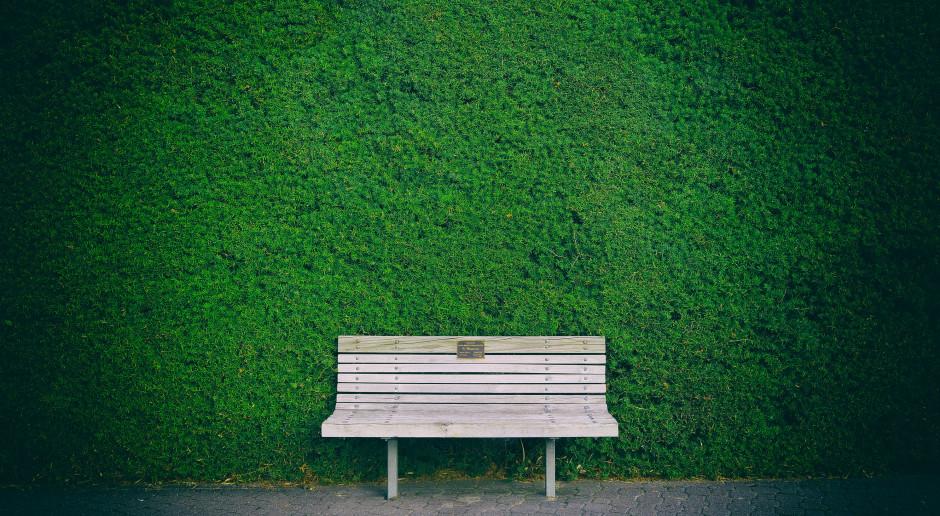 W Poznaniu powstał zespół ds. zielonych ścian i dachów