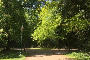 Nagroda Krajobrazowa dla Zespołu Parków Krajobrazowych Woj. Śląskiego