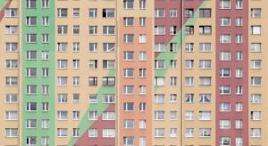 """Wałbrzych przystąpił do programu EBOR """"Zielone miasta"""""""