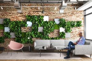 Meble biurowe z żywą roślinnością. Simpact VC inwestuje w 4Nature System