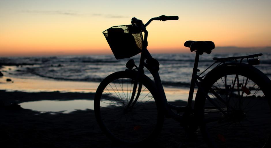 Na Wyspie Sobieszewskiej powstaje droga rowerowa z malowniczymi widokami