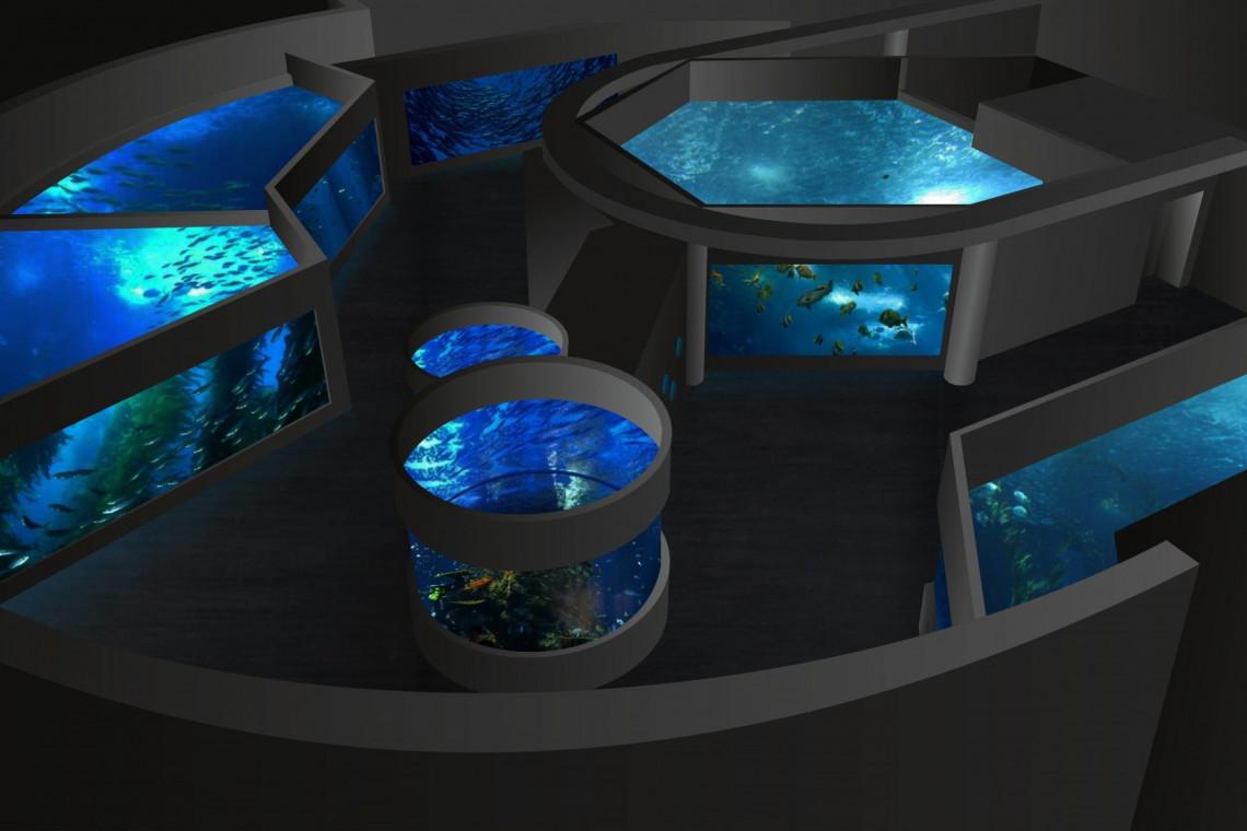 Akwarium w Gdyni z dodatkowymi środkami na rozbudowę