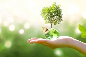 Zrównoważony rozwój od A do Z? Kampania edukacyjna na rzecz circular economy